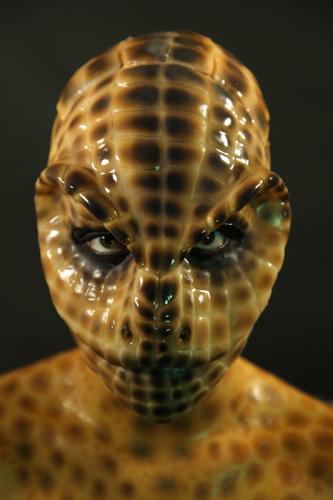 gallery lizard